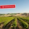 Neu bei Wine Deli – Premium Weine: Weine aus dem Washington State