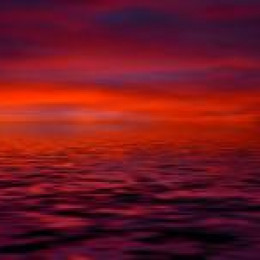 Das Rote Meer