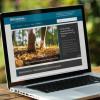 Surf-Tipp: 200 kostenlose Online-Tools für alle Lebenslagen / Endlich kein Matheschmerz mehr (FOTO)