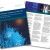 ISO 27001 – Sicherheit ist das Wichtigste