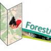 Mit der App ForestManager den Wald einfach und schnell digital verwalten