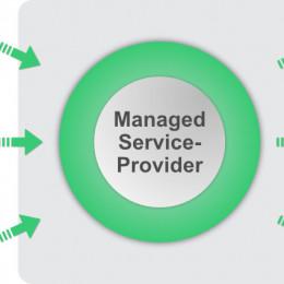 Volle MSP-Flexibilität ohne Hardware-Risiko