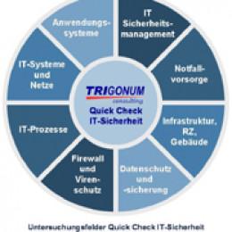 Trigonum Quick Check IT-Sicherheit schützt Unternehmen