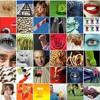 Pitopia.de: Über 50.000 Bilder zum Festpreis.