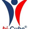 iSM sucht Pilotkunden für bi-Cube® als Managed Services / SaaS