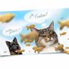 Mehr Komfort für Haustierbesitzer – foodinni, der neue Online-Shop
