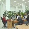 Der Winterthurer SEO Spezialist WebFirst konsolidiert Angebote