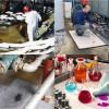 BIndemittel für Öle und Chemikalien mit hoher Saugfähigkeit