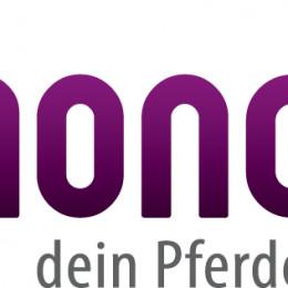 rimondo.com – Videos ab sofort auch zum Herunterladen