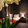 Zweite niederländische Hotelkette der neuen Generation standardisiert ihr System mit hetras